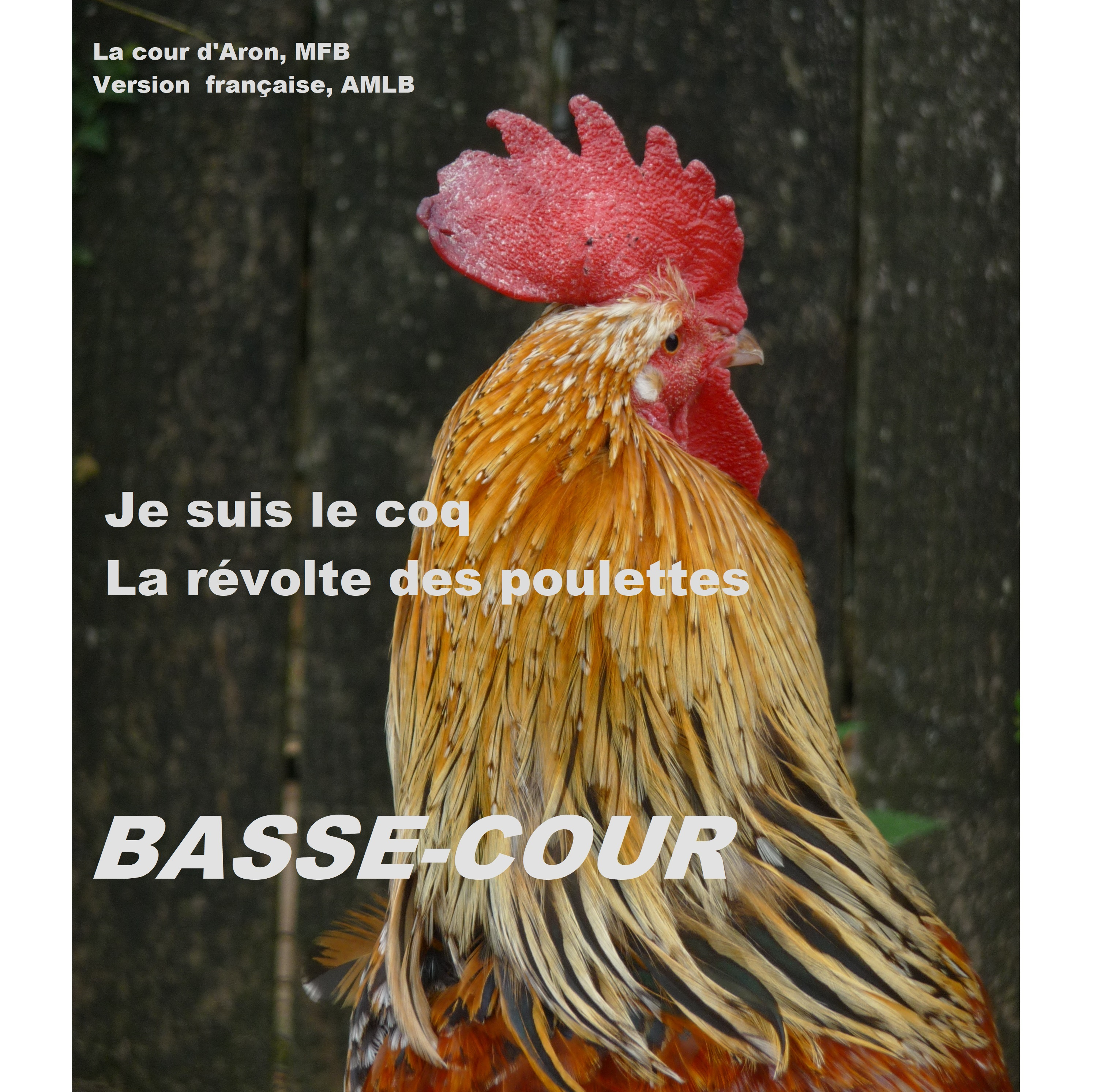 Basse cour